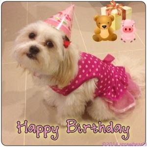 Happy Birthday Fluffball